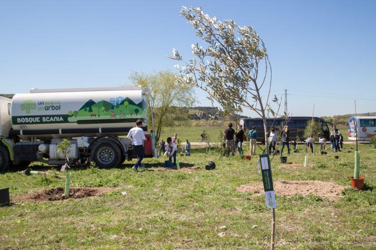El Bosque Scania ya cuenta con 13600 árboles plantados, correspondientes a las matriculaciones de camiones y buses Scania desde 2013 en España y Portugal.