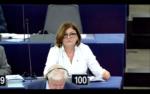 La Comisaria de Transportes Adina Vâlean quiere potenciar el ferrocarril y la euroviñeta