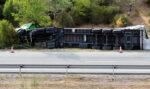 El estado de alarma ha multiplicado por 2,4 el número de conductores fallecidos